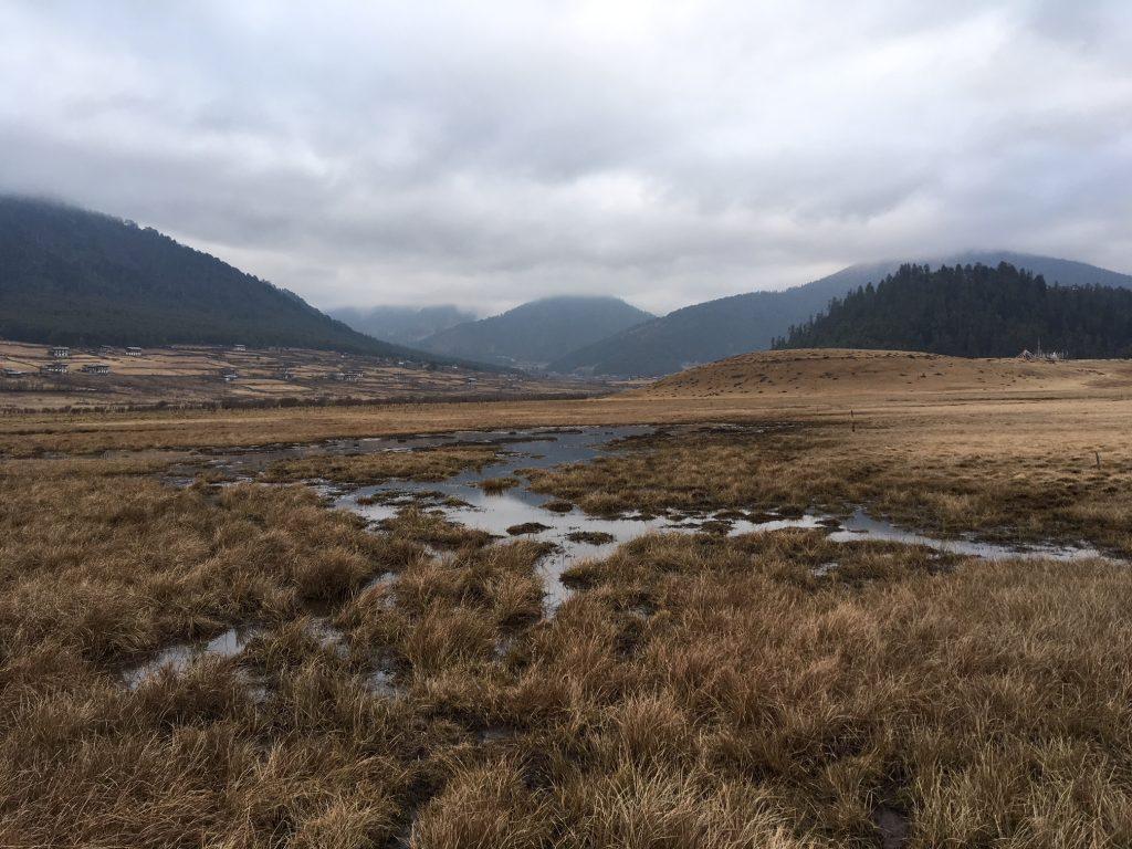 Gangtey Valley 2